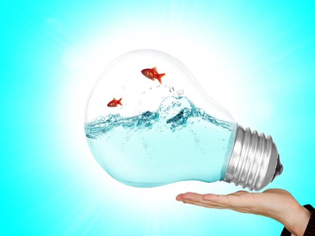 Les enjeux des cabinets conseil en innovation